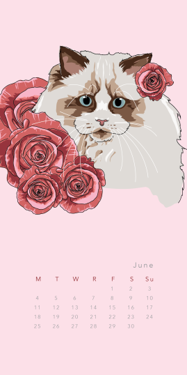 Purr & Fleur Calendar - June Panel